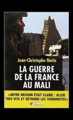 la-guerre-de-la-france-au-mali-534927-264-432